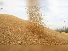 Photo of दुविधा में किसान, धान बेचें तो कहां, जो बिका उसका आधा भी नहीं हुआ भुगतान
