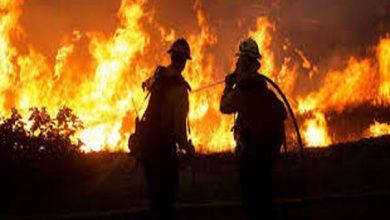 Photo of साहिबगंज के मखमलपुर में देर रात लगी भयानक आग, एक दर्जन घर जले, लाखों की संपत्ति स्वाहा