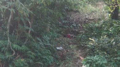 Photo of झारखंड के जंगलों में बिछा है मौत का सामान