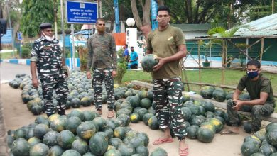 Photo of सीआरपीएफ की पहल से किसानों को अब नहीं होगा नुकसान, जानिए वजह