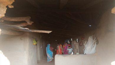 Photo of गिरिडीह : गांव में हाथियों के दल ने किया हमला, दो घरों को पहुंचाया नुकसान