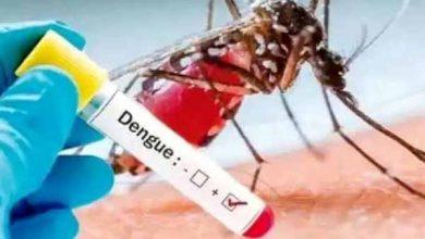 Photo of खतरे की घंटी, झारखंड के साढ़े चौदह हजार घरों में मिला डेंगू का लार्वा